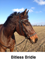 Bitless Bridle - bitless riding, because the horses deserve it